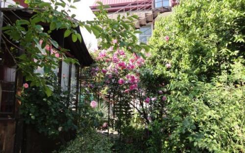 Гостевой дом Южанка, Геленджик
