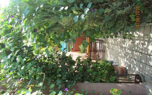 Частный дом на Тургенева Анапа